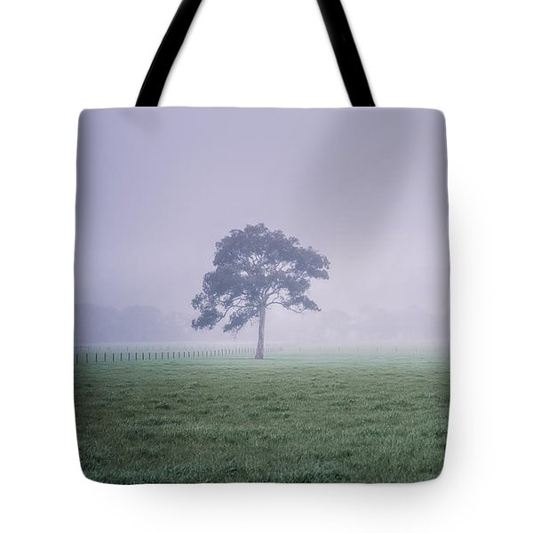 Tote Bag featuring the photograph The Mist Settles by Ray Warren