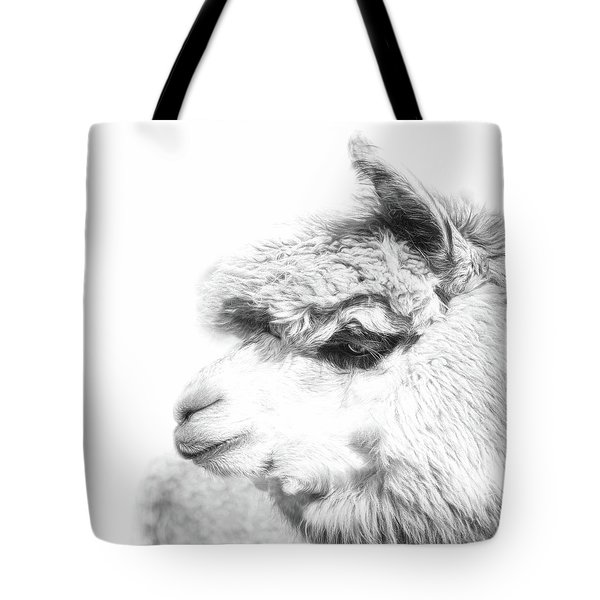 Tote Bag featuring the photograph The Misty by Robin-Lee Vieira