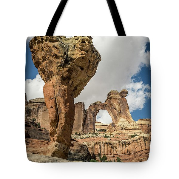 The Molar And Angel Arch Tote Bag