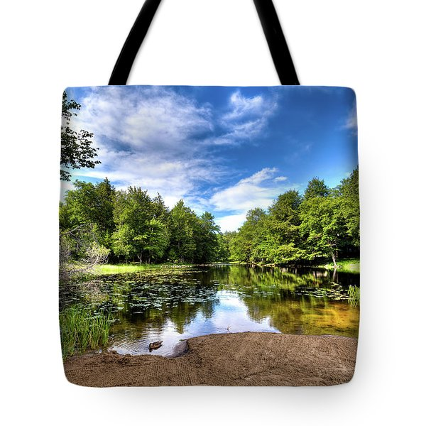 Tote Bag featuring the photograph The Moose River At Covewood by David Patterson