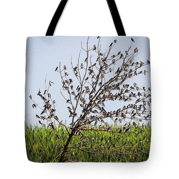 Tote Bag featuring the photograph The More The Merrier- Tree Swallows  by Ricky L Jones