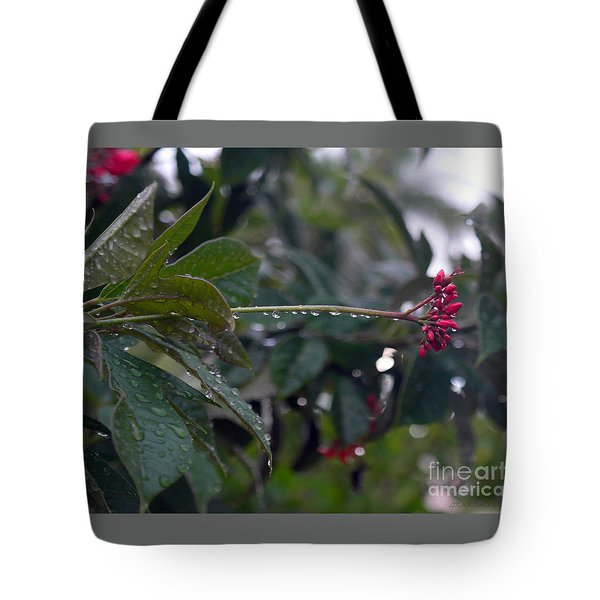 The Morning Kiss Tote Bag by Irma BACKELANT GALLERIES