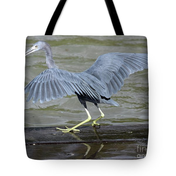 The Morsel After Scooch Tote Bag