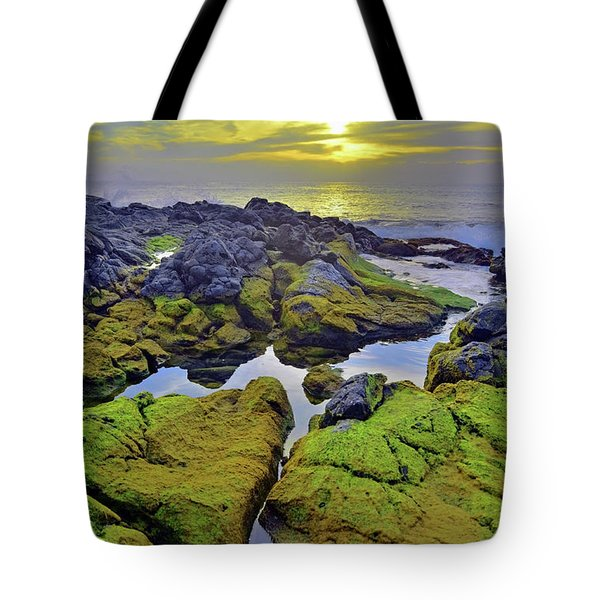 Tote Bag featuring the photograph The Mossy Rocks At Sunset by Tara Turner