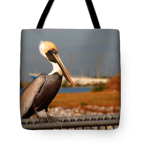 The Most Beautiful Pelican Tote Bag by Susanne Van Hulst