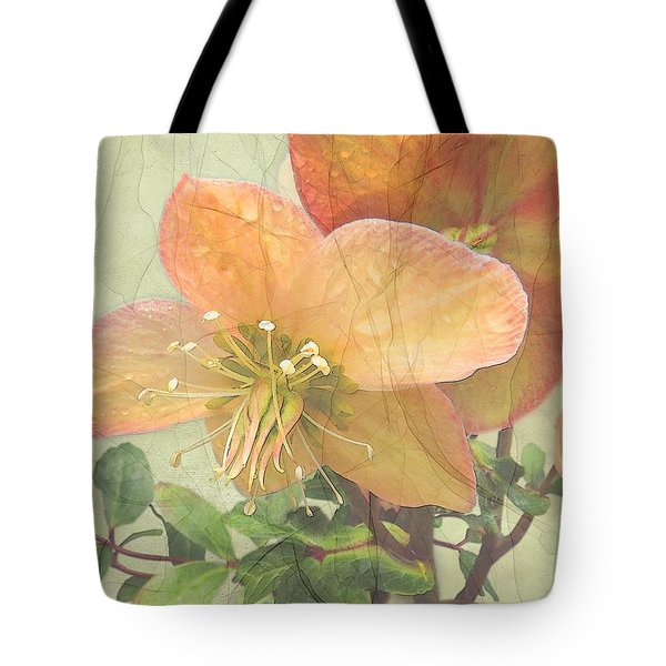 The Mystical Energy Of Nature Tote Bag
