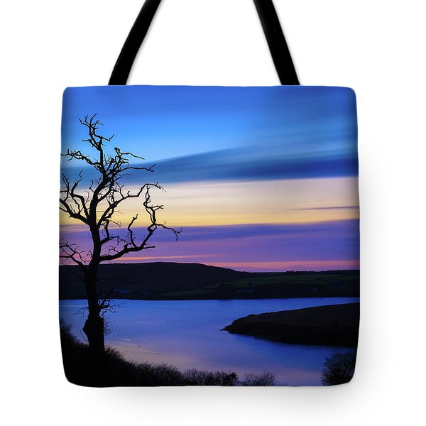Tote Bag featuring the photograph The Naked Tree At Sunrise by Semmick Photo