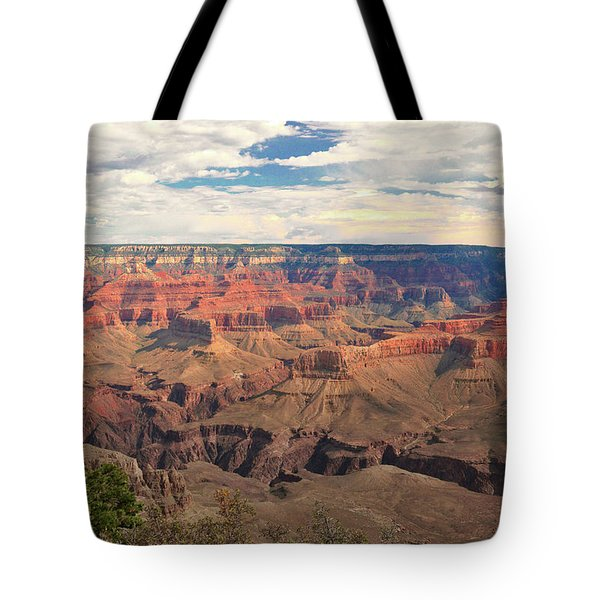 The Natives Holy Site Tote Bag