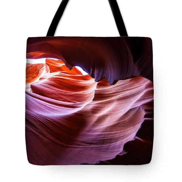 The Natural Sculpture 14 Tote Bag