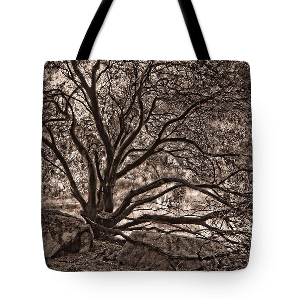 The Nature Of Trees In Sepia Tote Bag