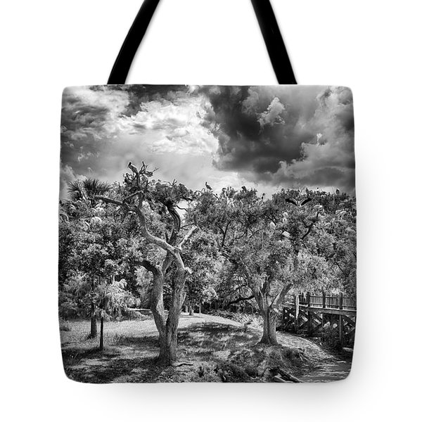 Tote Bag featuring the photograph The Nest by Howard Salmon