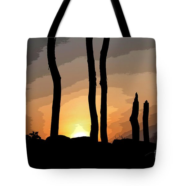The New Dawn Tote Bag by Tom Cameron
