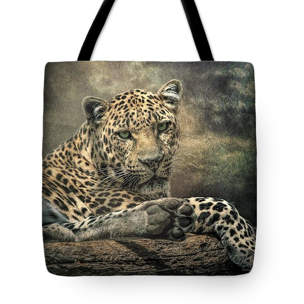 Tote Bag featuring the photograph The Night Of The Leopard by Brian Tarr