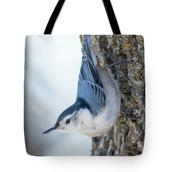 The Nut Collector... Tote Bag