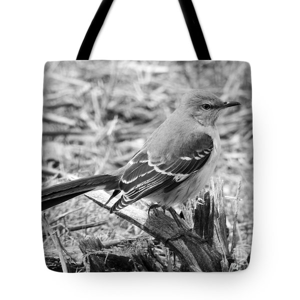 Tote Bag featuring the photograph The Observer by Anita Oakley