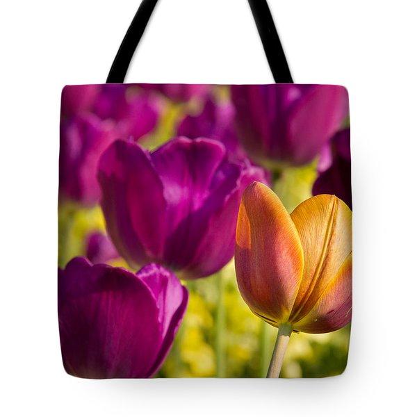 The Odd Yellow Tulip Tote Bag