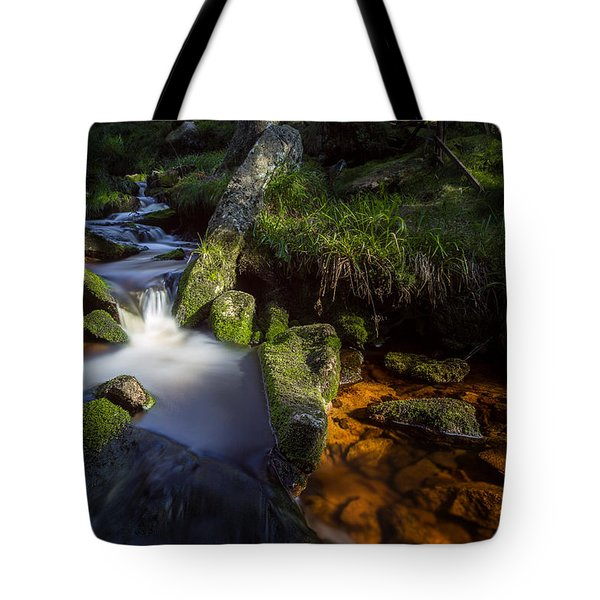 the Oder in the Harz National Park Tote Bag by Andreas Levi