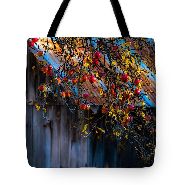The Old Barn Tote Bag by Sherman Perry