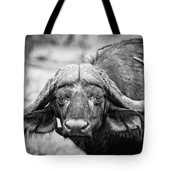 The Old Bull Tote Bag