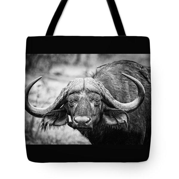The Old Bull Tote Bag by Stefan Nielsen