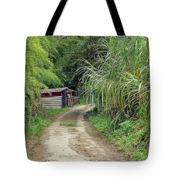 Tote Bag featuring the photograph The Old Forest Road by Yali Shi