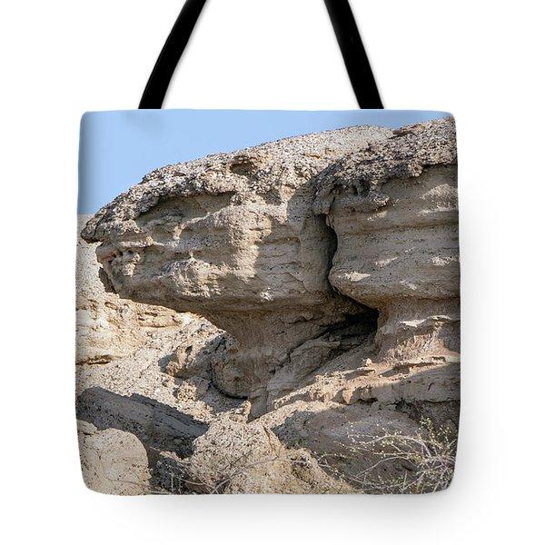 The Old Gatekeeper Tote Bag
