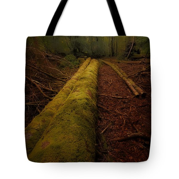 The Old Mossy Trunk Tote Bag