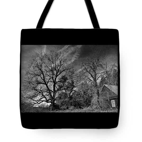 The Old Oak Tree Tote Bag by Steve Warnstaff