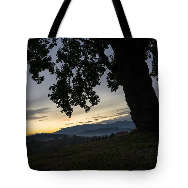 Tote Bag featuring the photograph The Old Oak by Yuri Santin