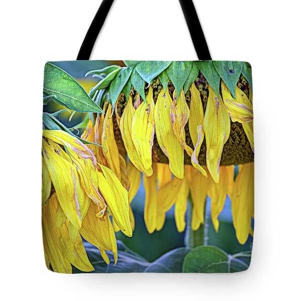The Old Sunflowers Tote Bag