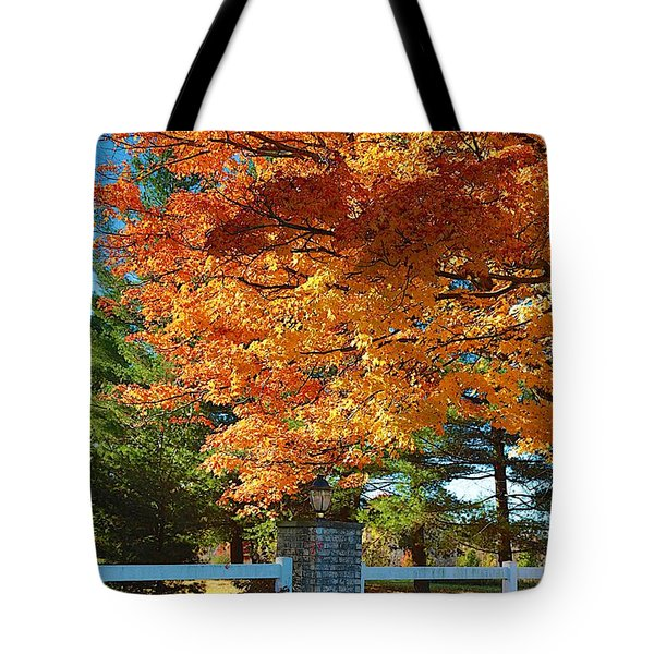 The Old Yard Light Tote Bag