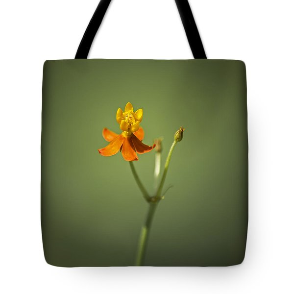 The One - Asclepias Curassavica - Butterfly Milkweed Tote Bag by Johan Hakansson