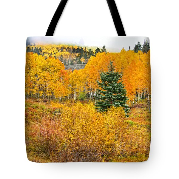 The One That Stands Out  Tote Bag