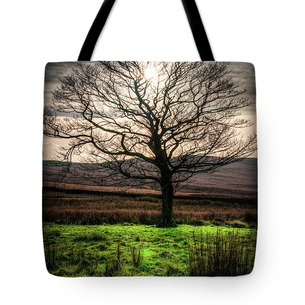 The One Tree Tote Bag