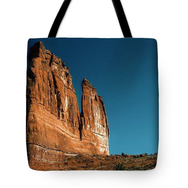 The Organ Tote Bag