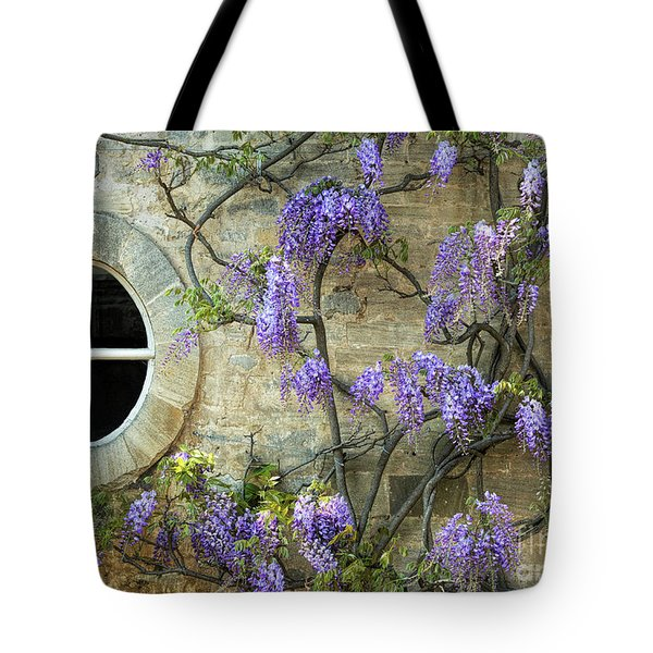The Oval Window Tote Bag