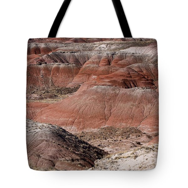 The Painted Desert  8024 Tote Bag