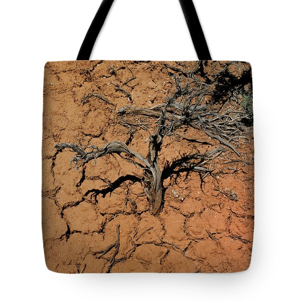 Tote Bag featuring the photograph The Parched Earth by Ron Cline