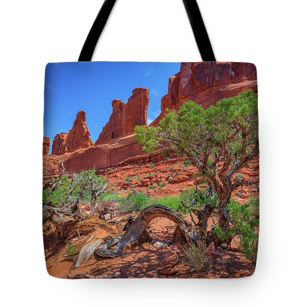 The Park Avenue Trail Tote Bag