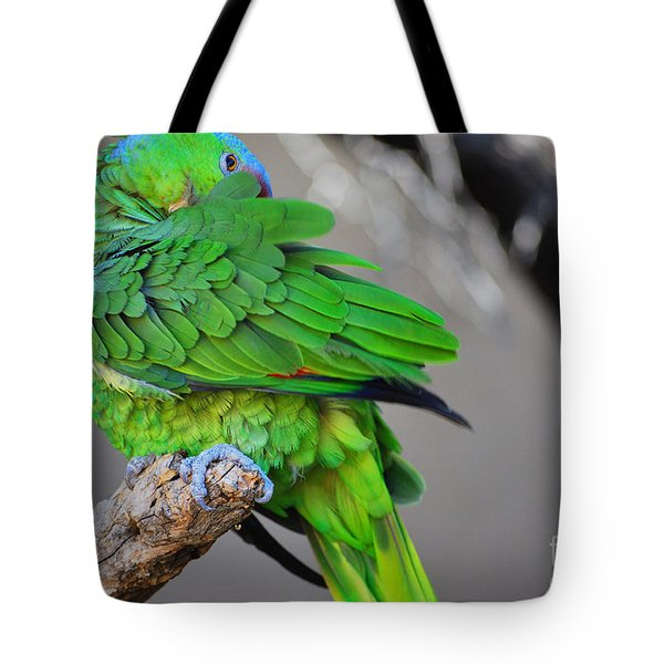 The Parrot Tote Bag by Donna Greene
