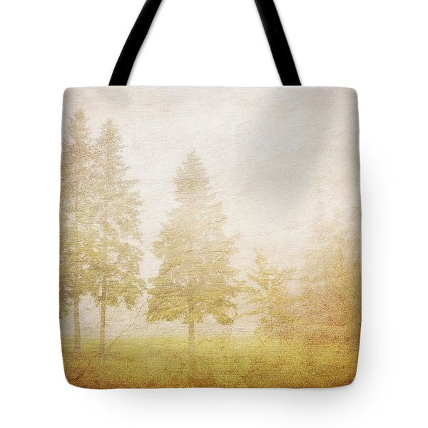 The Past Is Gone Tote Bag