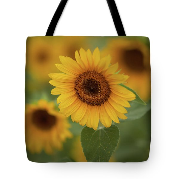 The Patch Of Sunflowers Tote Bag