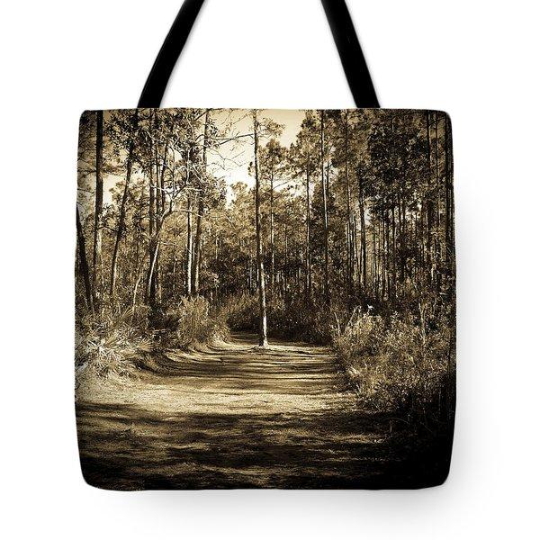 The Path Before Me, No. 6 Tote Bag
