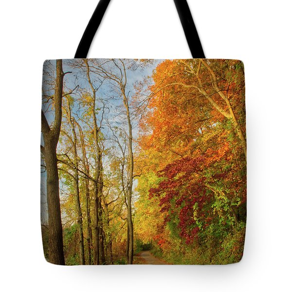 Tote Bag featuring the photograph The Path In Fall by Mark Dodd