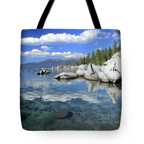 Tote Bag featuring the photograph The Path To Reflection by Sean Sarsfield