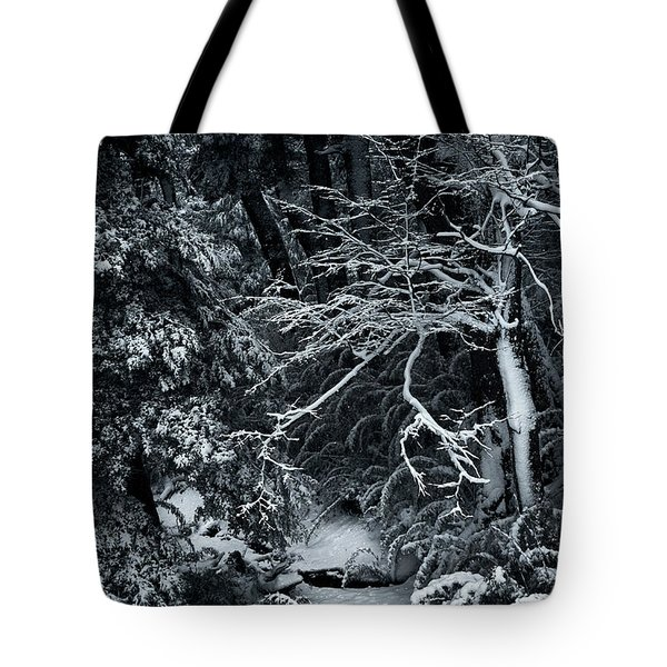 The Path To The Frozen Forest In The Argentine Patagonia Tote Bag