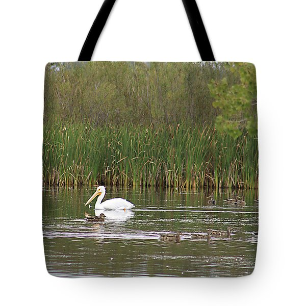 Tote Bag featuring the photograph The Pelican And The Ducklings by Alyce Taylor
