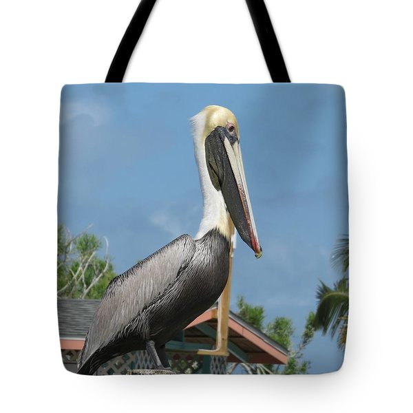 Tote Bag featuring the photograph The Pelican by Robin Regan
