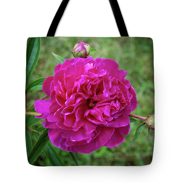 Tote Bag featuring the photograph The Peonie by Mark Dodd