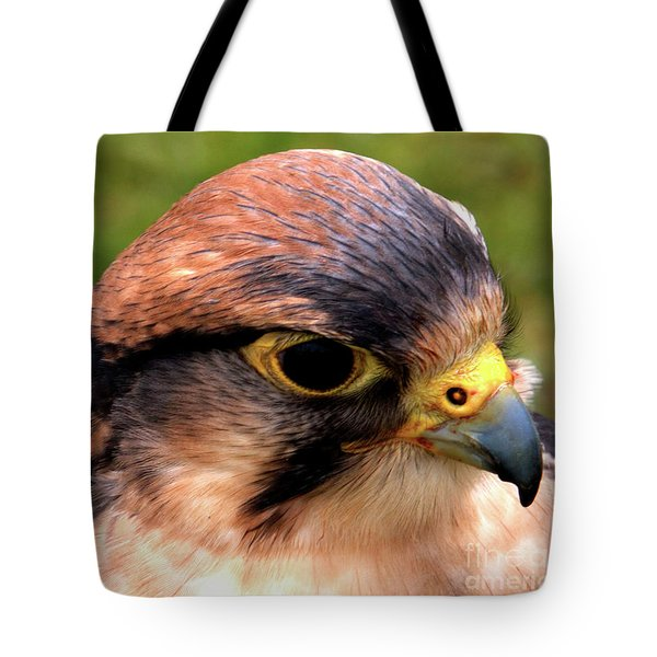 The Peregrine Tote Bag by Stephen Melia